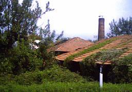ex fornace tradate tetto comignolo stabile verde vegetazione