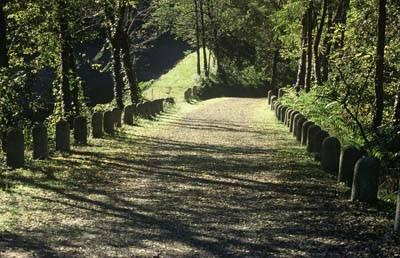 percorso ciclabile parco ticino