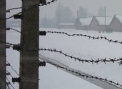 auschwitz ebrei olocausto shoah