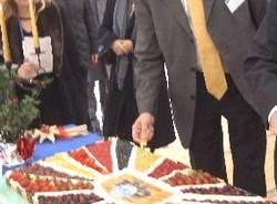 ccr ispra inaugurazione laboratorio sicurezza alimentare taglio torta schenkel