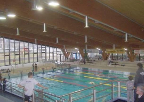 Rosolino e magnini superstar alla piscina di via manara varesenews foto - Piscina busto arsizio ...