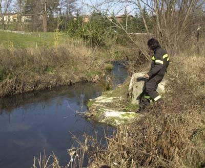 mornago_fiume_strona_inquinamento