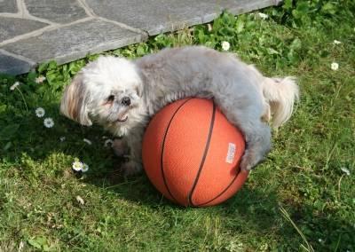 Flo e la palla