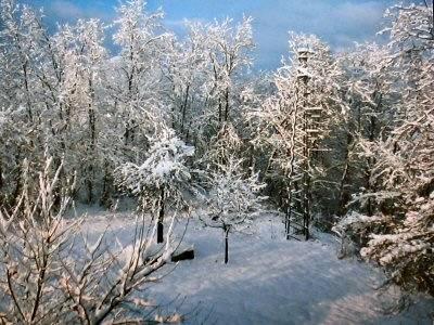Inverno 84-85