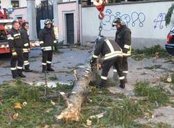 gru varese pompieri