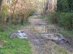 immondizia bosco strada per Gorla