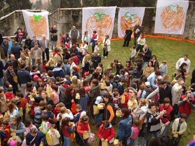 kaki tree project casciago 2008
