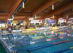 piscina manara busto trofeo ispra nuoto
