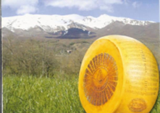 Consumi: Coldiretti, no a mani francesi su Parmigiano Italiano