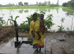 galleria viaggio subcontinente indiano stefano marcora settembre 2008 bangladesh risaie