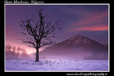 Monte Mondonico