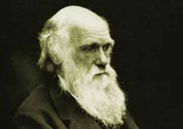 Darwin Day: conferenze e laboratori al Museo di Modena