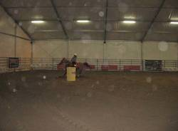 2009 malpensa cavalli