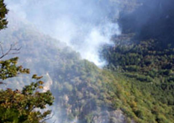 incendio bosco seconda