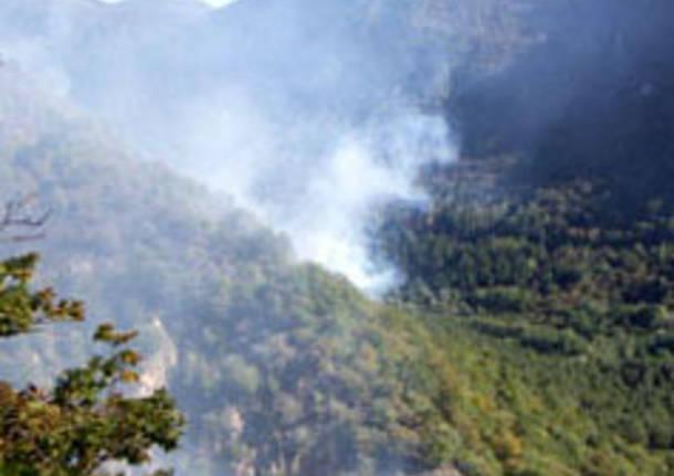 incendio bosco seconda seconda