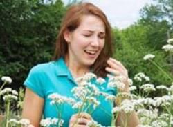 allergia raffreddore sturnuti