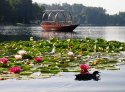lago monate