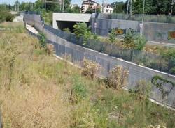 ambrosia busto via gioberti settembre 2009