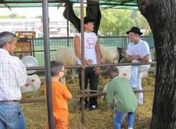 zootecnica tradate 2009