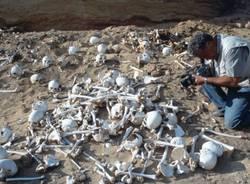 alfredo castiglioni gemelli castiglioni egitto siwa armata perduta cambise archeologia