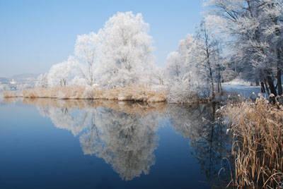 Lago di Comabbio con 10 gradi sotto zero.