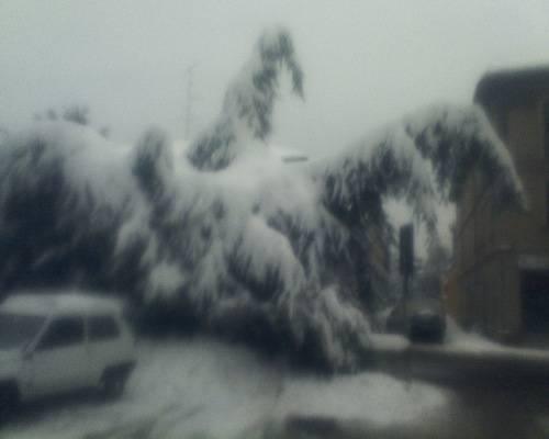 Neve a Gallarate