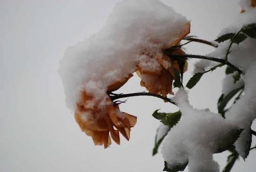 seconda galleria neve lettori nevicata 22 dicembre 2009
