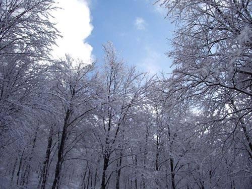 neve valganna monte piambello gennaio 2010