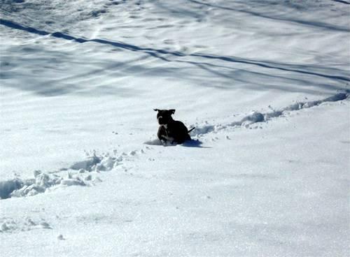 Cindy nella neve
