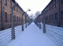 Gaia Croce Auschwitz