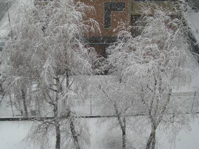 Neve a Busto Arsizio 5-2-2010