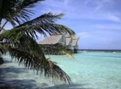 maldive prima