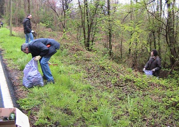 verde pulito 2010