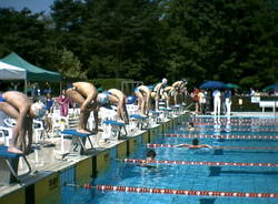 piscina moriggia amsc gallarate