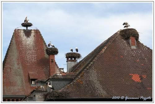 Munster, Alsazia Francia