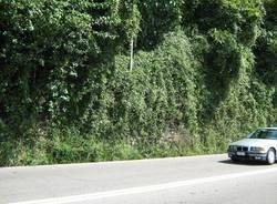 sicurezza strade varese muraglione belforte