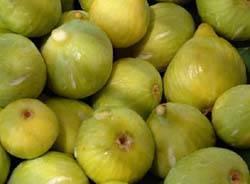 fichi fico frutto