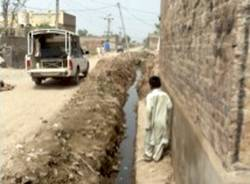 Pakistan diana bassani