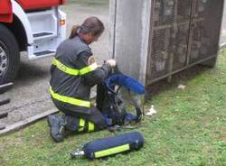 incendio ferno 5-11-2010