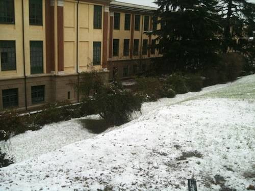 prima neve 2010 castellanza