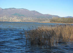lago varese dicembre 2010
