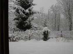 neve lettori dicembre 2010