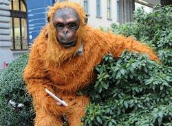 orango ubs lugano