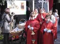 olio di sant'Imerio