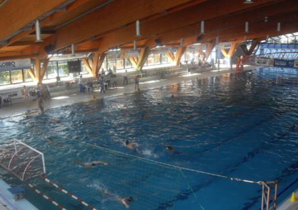 Pallavolo busto vince su milano 2 - Zero piscina busto arsizio ...