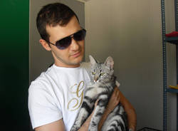 gattile cassano magnago