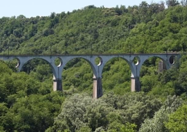 malnate 2011 ponte di ferro