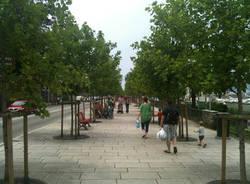 parco lungolago luino giugno 2011