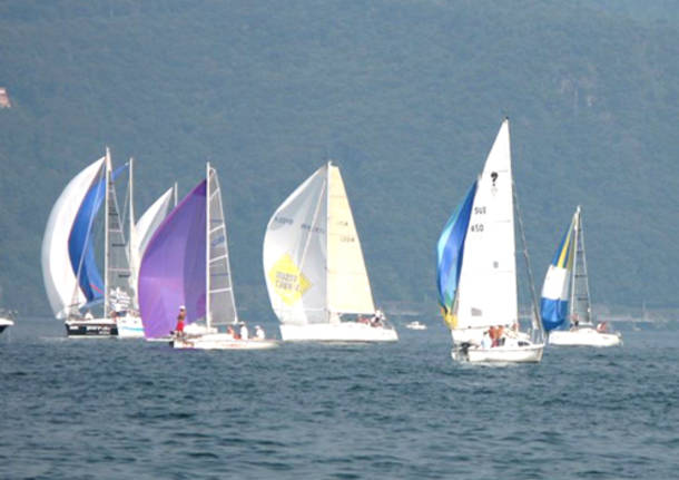 vela regata mazzarditi barche lago maggiore