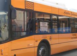 autobus foto